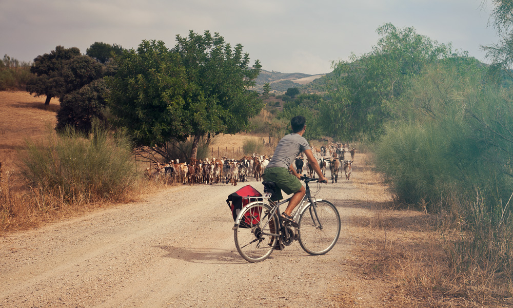 FIetsroutes Andalusia – Fietsen in Andalusia